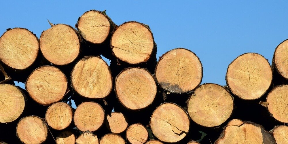 logs piled on one another